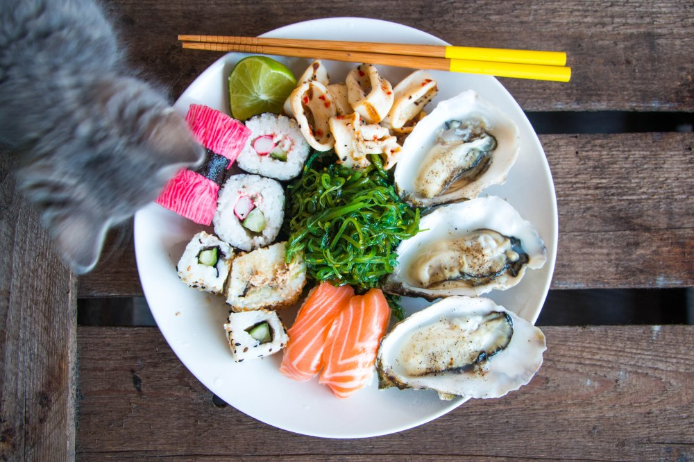 Sushi & Moos